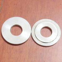 P15-6850-08 Inner Piston Washer Parts Fit for Wilden Pumps